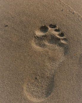 sand footprint s