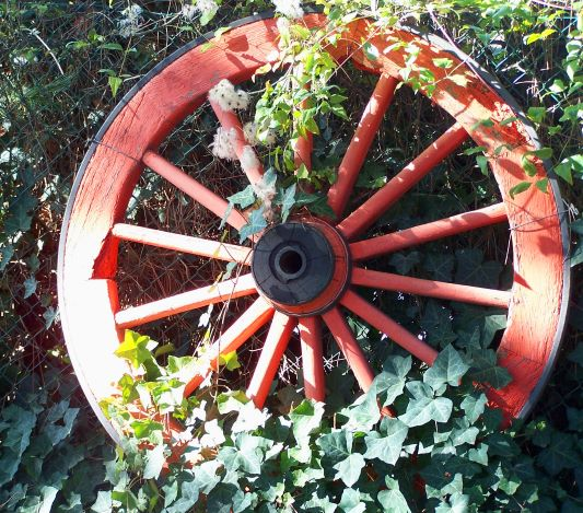 wheel s