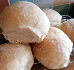 bread rolls s