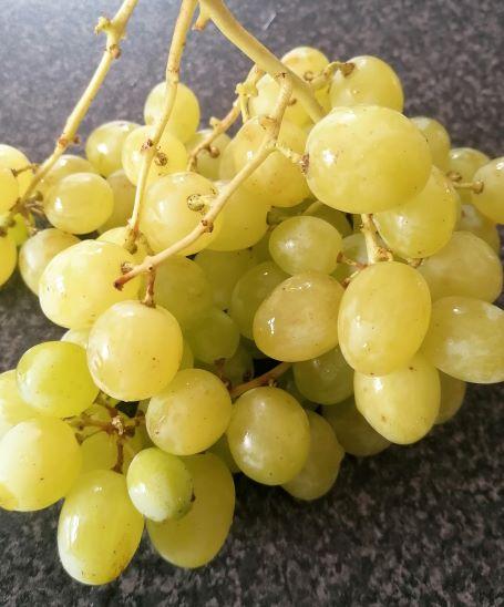 grapes s