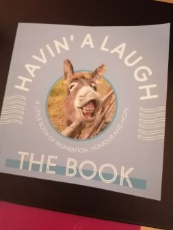 havin a laugh book s