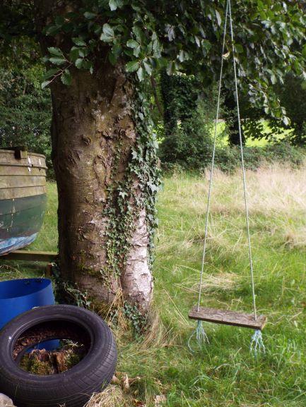 tree swing s